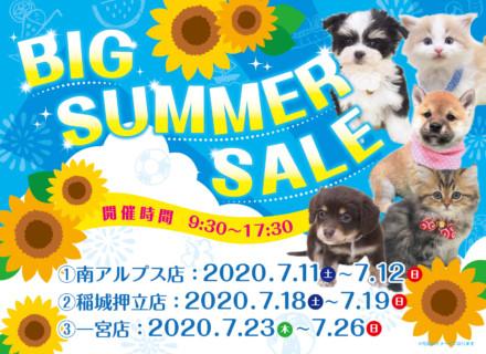 BIG SUMMER SALE開催
