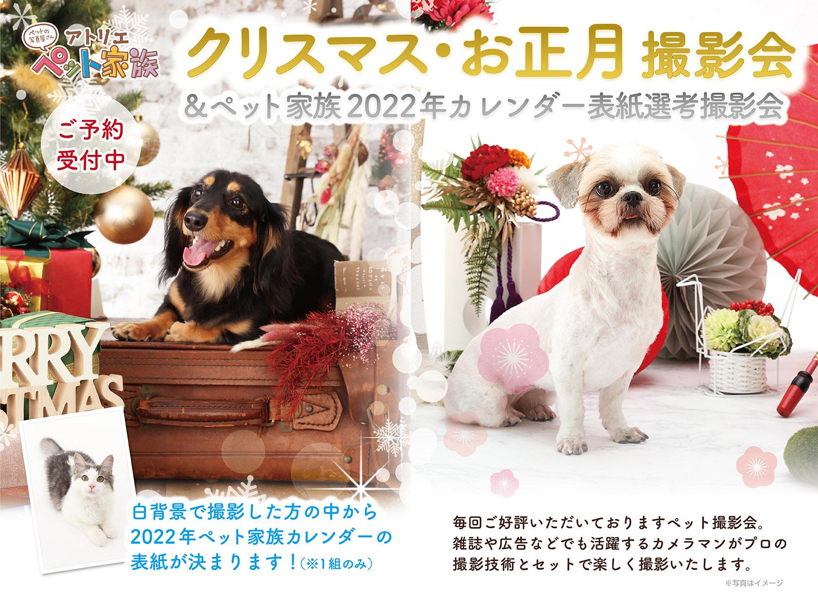 クリスマス・お正月撮影会 開催!