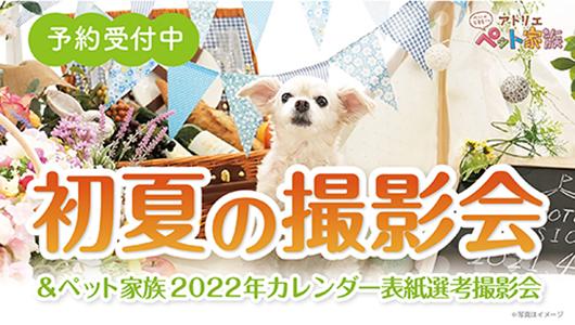 初夏の撮影会開催!
