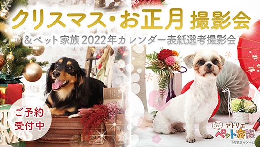 クリスマス・お正月撮影会