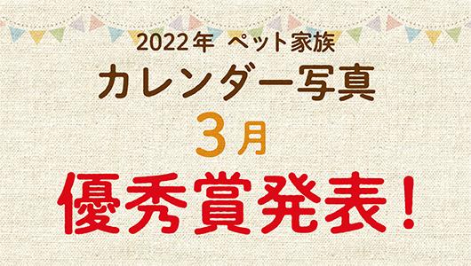 2022年ペット家族カレンダー3月優秀賞発表!