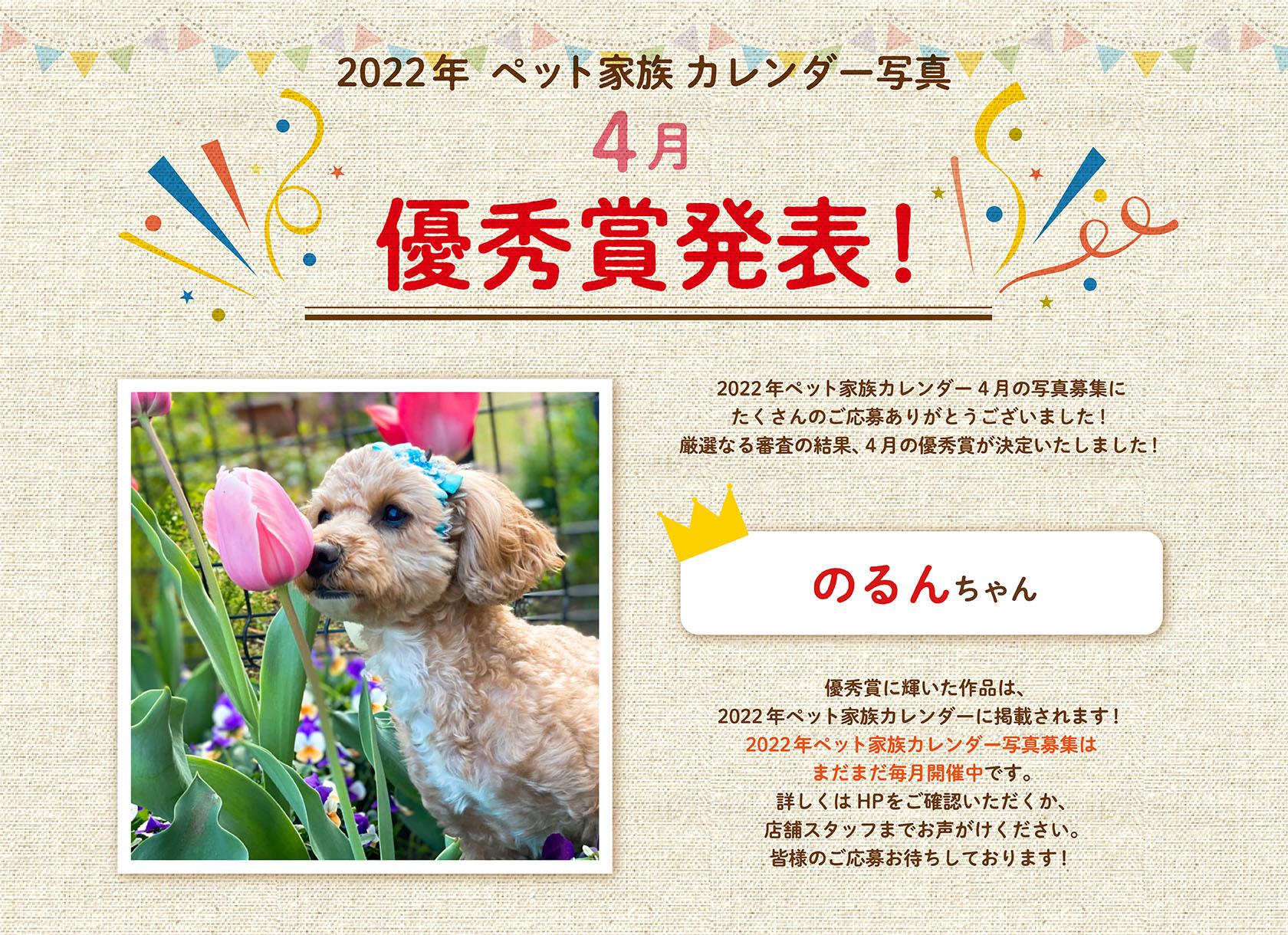 2022年ペット家族カレンダー4月優秀賞発表!