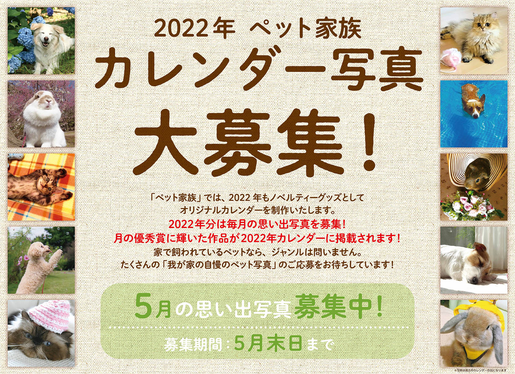 2022年 ペット家族 カレンダー写真大募集!