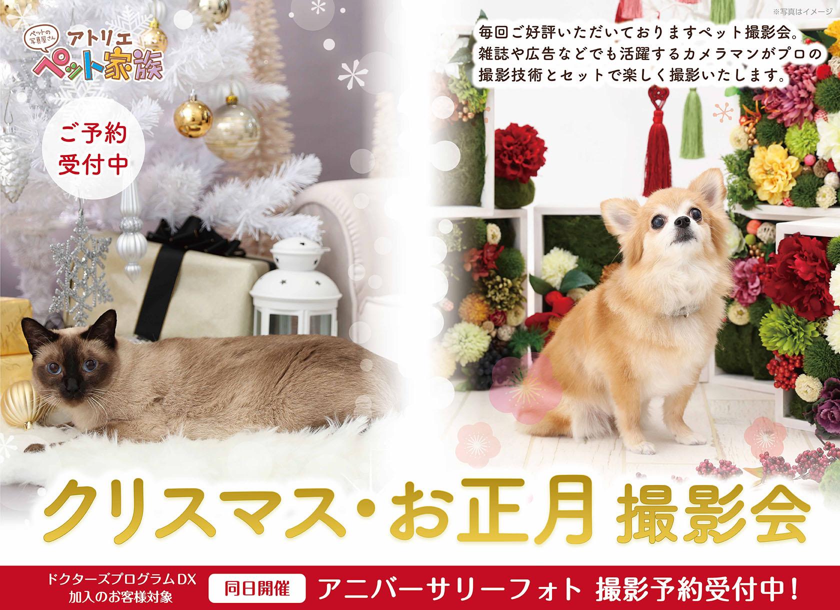 クリスマスお正月撮影会開催♪  ご予約受付中!