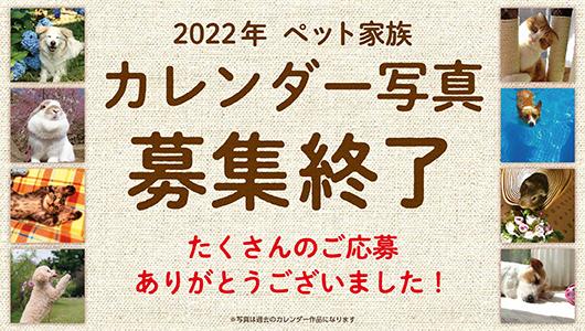 2022年 ペット家族 カレンダー写真募集終了のお知らせ