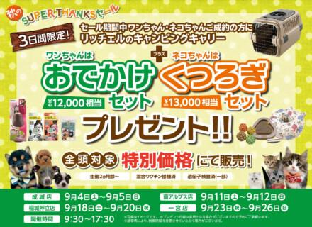 『秋のSUPER THANKSセール』開催!!キャンピングキャリーセットプレゼント!