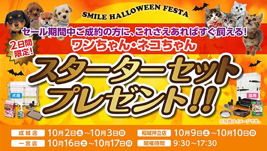 『秋のSUPER THANKSセール』開催!!