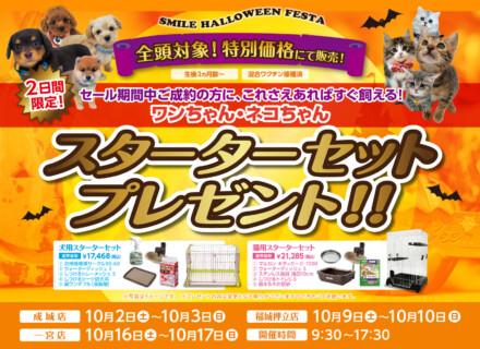 『SMILE HALLOWEEN FESTA』開催!!スターターセットプレゼント!