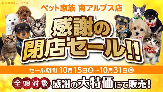 ペット家族南アルプス店 感謝の閉店セール!!